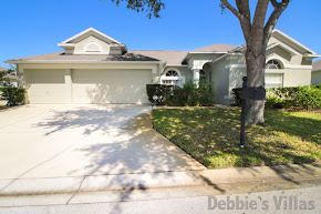 Orlando villa on gated community close to Disney, lake view, private pool and spa, games room