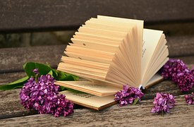 book-pages-760138__180.jpg