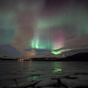 aurora colorful by Benny Høynes - Landscapes Starscapes ( colour, canon, 5dmk2, ice, aurora, sea, boreoalis, bennyhoynes )