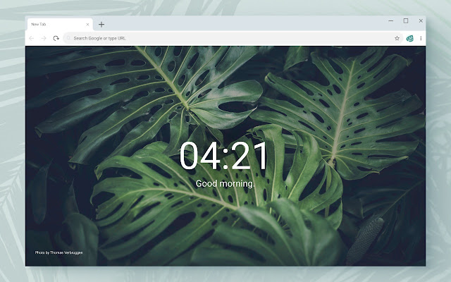 Just Plants - New Tab