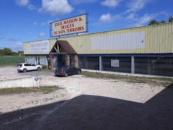 locaux professionels à Maizières-la-Grande-Paroisse (10)