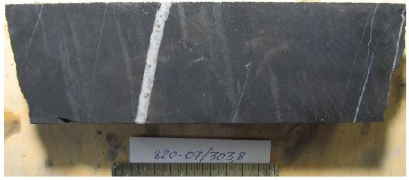 Сульфидно-карбонатно-кварцевый прожилок в алевропесчанике.