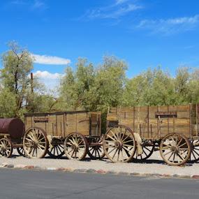 Borax 20 Mule Team Wagon  by Rita Goebert - Transportation Other ( borax mule team wagon; wheels; death valley; california,  )