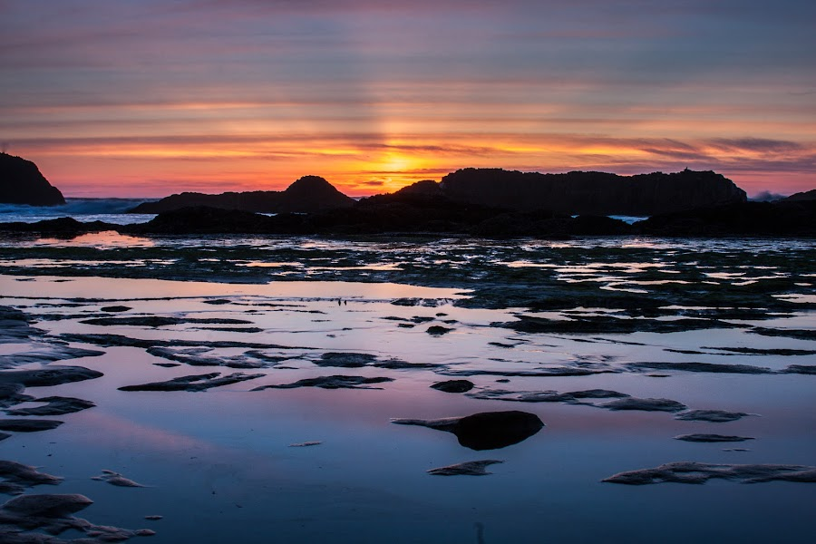 Seal Rock Oregon by Craig Pifer - Landscapes Sunsets & Sunrises ( seal rock, sunset, oregon coast, ocean, beach, landscape )