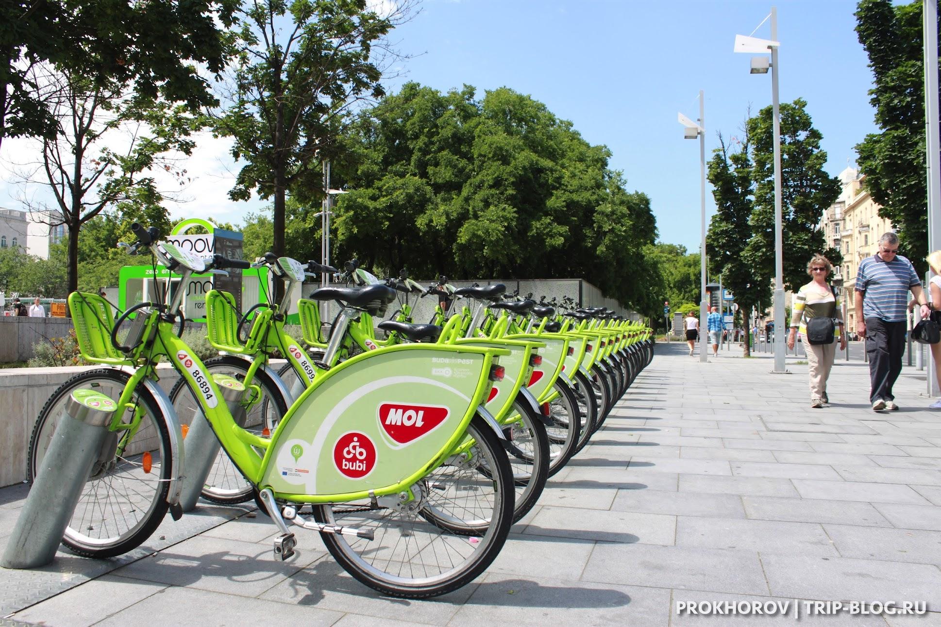 Прокат велосипедов в Будапеште