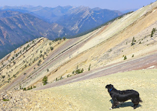 Photo: Missy was admiring the geology from the ridge just below the lookout
