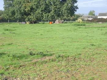 terrain à Conteville (14)