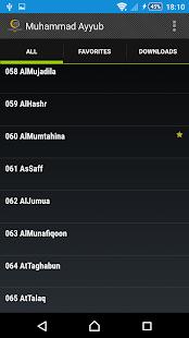 Muhammad Ayyub - Quran - náhled