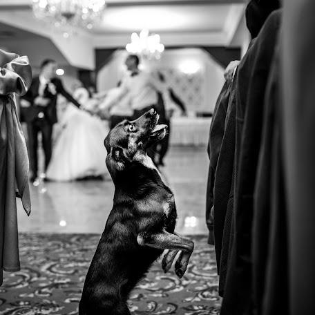 Wedding photographer Alin Pirvu (AlinPirvu). Photo of 15.01.2018