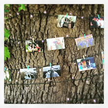 Photo: Family Tree