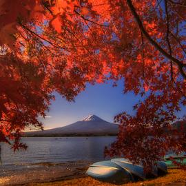 Autumn at Fujikawaguchiko by Nyoman Sundra - Landscapes Travel ( mountains, autumn, fuji, travel, landscape )