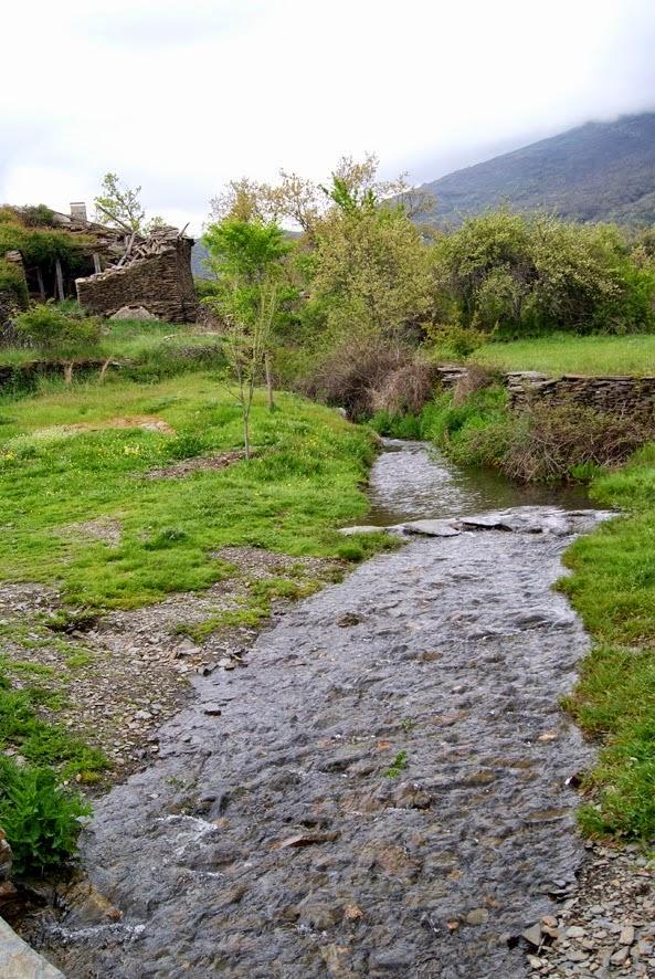Photo: Pore nuestra zona hay abundantes arroyos