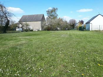 terrain à Beaugency (45)