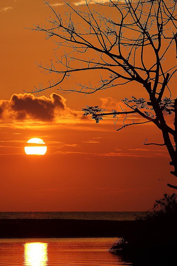 Sunset by Ayeeb Sasabone - Landscapes Weather