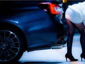 レヴォーグ VM4 H29年式 STI Sports 1.6 EyeSight アドバンスドセーフティーパッケージ STIスタイルパッケージ装着車のカスタム事例画像 しに子さんの2018年12月03日22:27の投稿