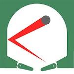 Pitball Icon