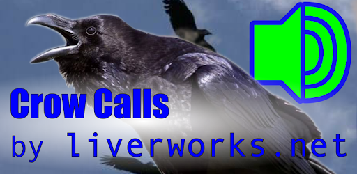 Crow Calls - Apps on Google Play