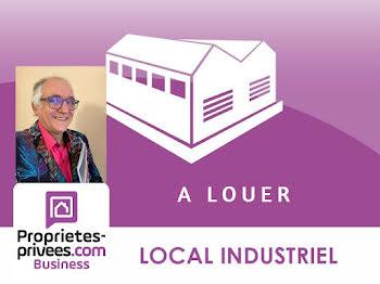 locaux professionnels à Sarrebourg (57)