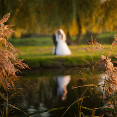 Wedding photographer Igor Krickiy (krit). Photo of 08.01.2015