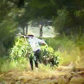 Chinese farner by Gaylord Mink - Digital Art People ( woods, vegatables, farmer, digital art )