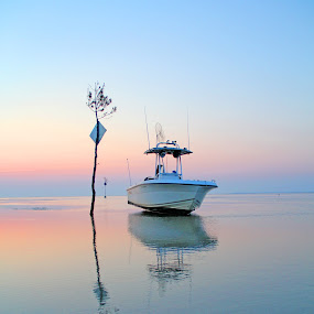 Stranded Boat at Rock Harbor by Jim DeMicco - Landscapes Waterscapes ( water, reflection, tree, sunset, boat )
