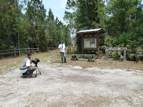 Photo: Interview at Longleaf Pine Preserve near Orlando (Florida).