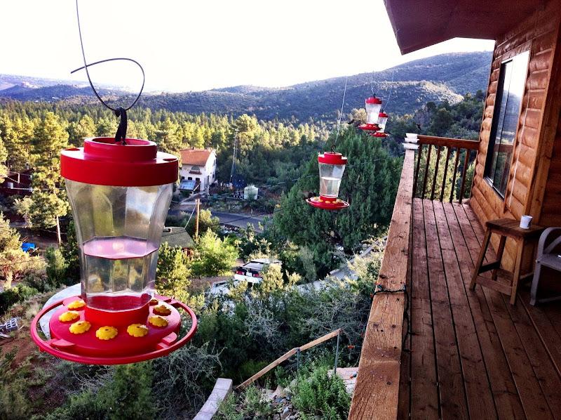 Photo: Morning view in Prescott, where the hummingbirds swarm. Not kidding.
