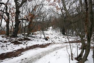 Photo: A Barackos út jobb kanyarja a Cseresznyés út felé. Szemben a sziklák mellett az Asztal-kőre vezető jelzetlen ösvény a lefutó gerincen.