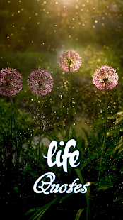 Download Life Quotes For PC Windows and Mac apk screenshot 1