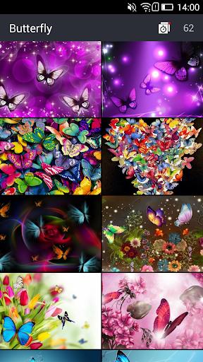 美麗的蝴蝶壁紙