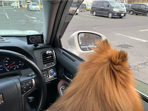 クラウンアスリート AWS211 ハイブリッド アスリートS 4WDのカスタム事例画像 ノンさんの2020年02月09日15:21の投稿