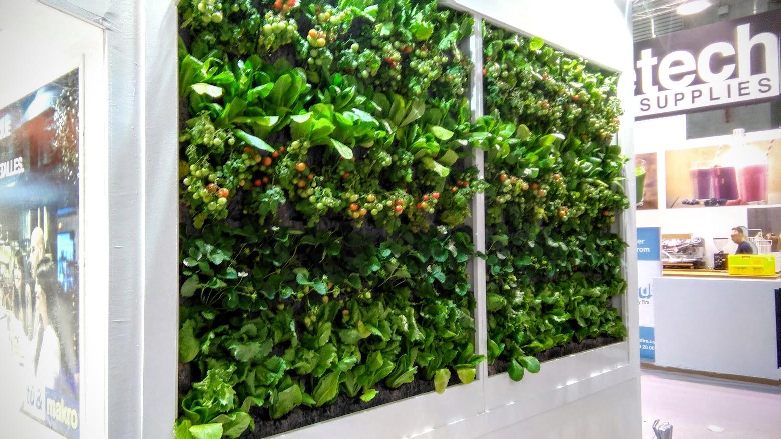 Jardín vertical de huerta vertical