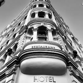 Hotel CBD, Sydney by Di Mc - Buildings & Architecture Public & Historical ( federation, sydney, white, black, australia, building, architecture )