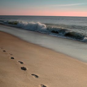 Footprints by Terri Schaffer - Landscapes Beaches (  )