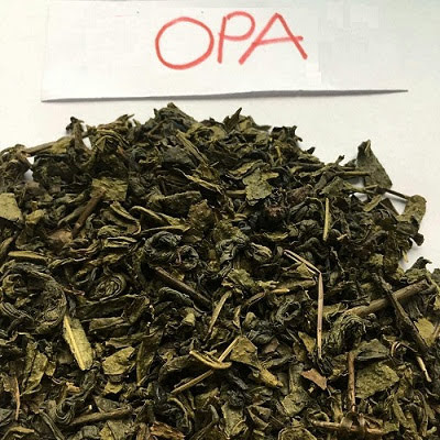 Green Tea OPA