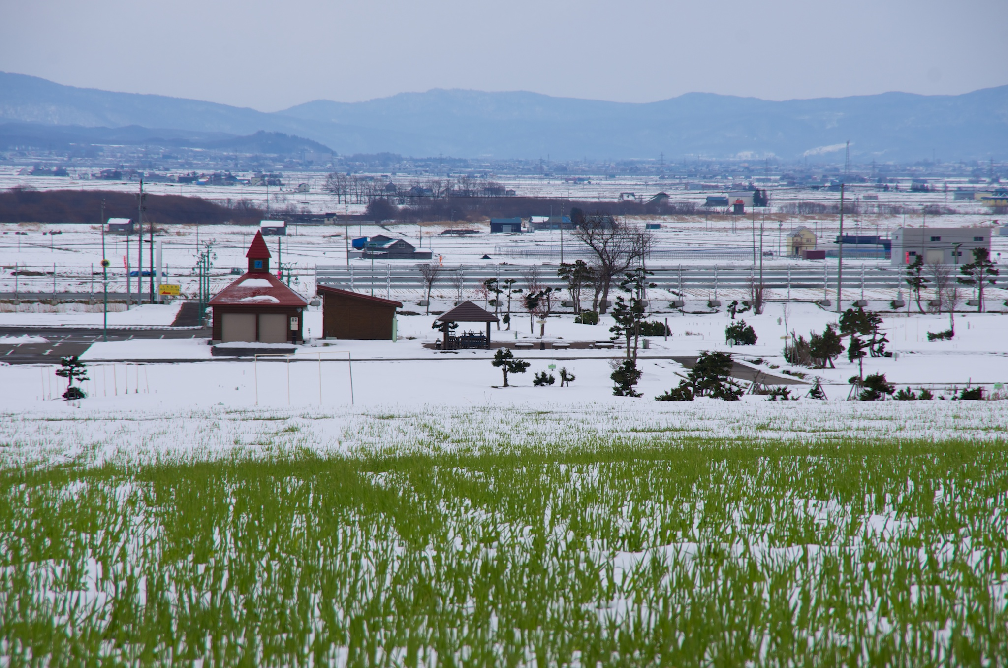 Photo: 北竜町の彩どり・11月の3