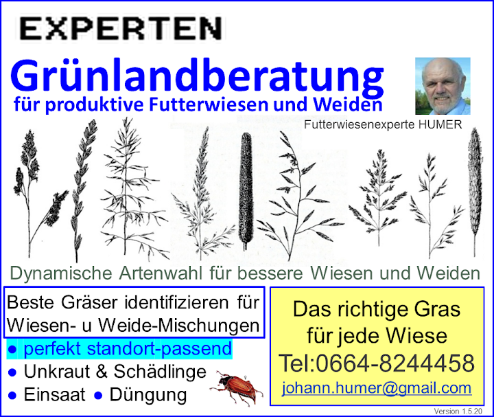 Dynamische Gräserwahl zur Wiesenverbesserung – Futterwiesenexperte HUMER