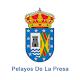 Pelayos de la Presa Download on Windows