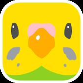 ParrotsPuzzle