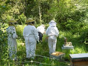 Photo: Journée au sentier nature samedi, le rucher
