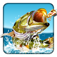 Pocket Fishing apk