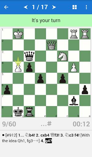 Encyclopedia Chess Combinations Vol. 3 Informant 1.3.5 screenshots 2