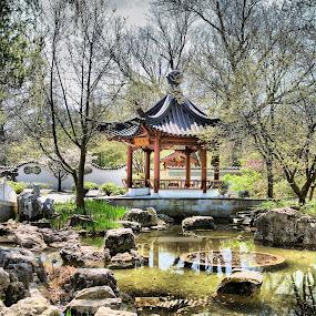Chinese Pagoda by Steve Edwards - City,  Street & Park  City Parks ( chinese pagoda, park scene, park, pagoda, rocks )