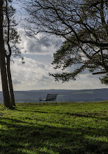 Photo: Day after day, alone on the hill... #benchsaturday curated by +Rainer M. Ritz