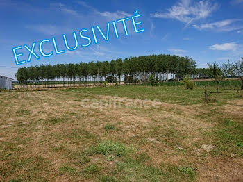 terrain à Pierre-de-Bresse (71)