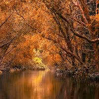 Atmosfera d'autunno di