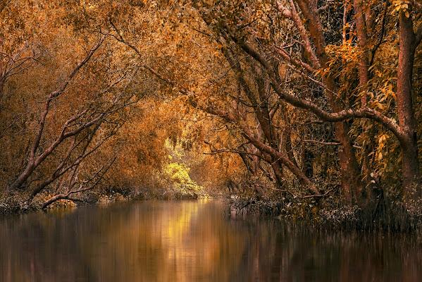Atmosfera d'autunno di Roberto Pazzi Photography