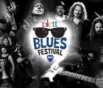 Plett Blues Festival : The Barnyard - Plettenberg Bay