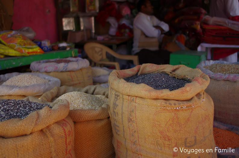 Lentilles Jodhpur