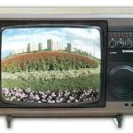 """Телевизор цветной """"Рубин-707Д"""""""